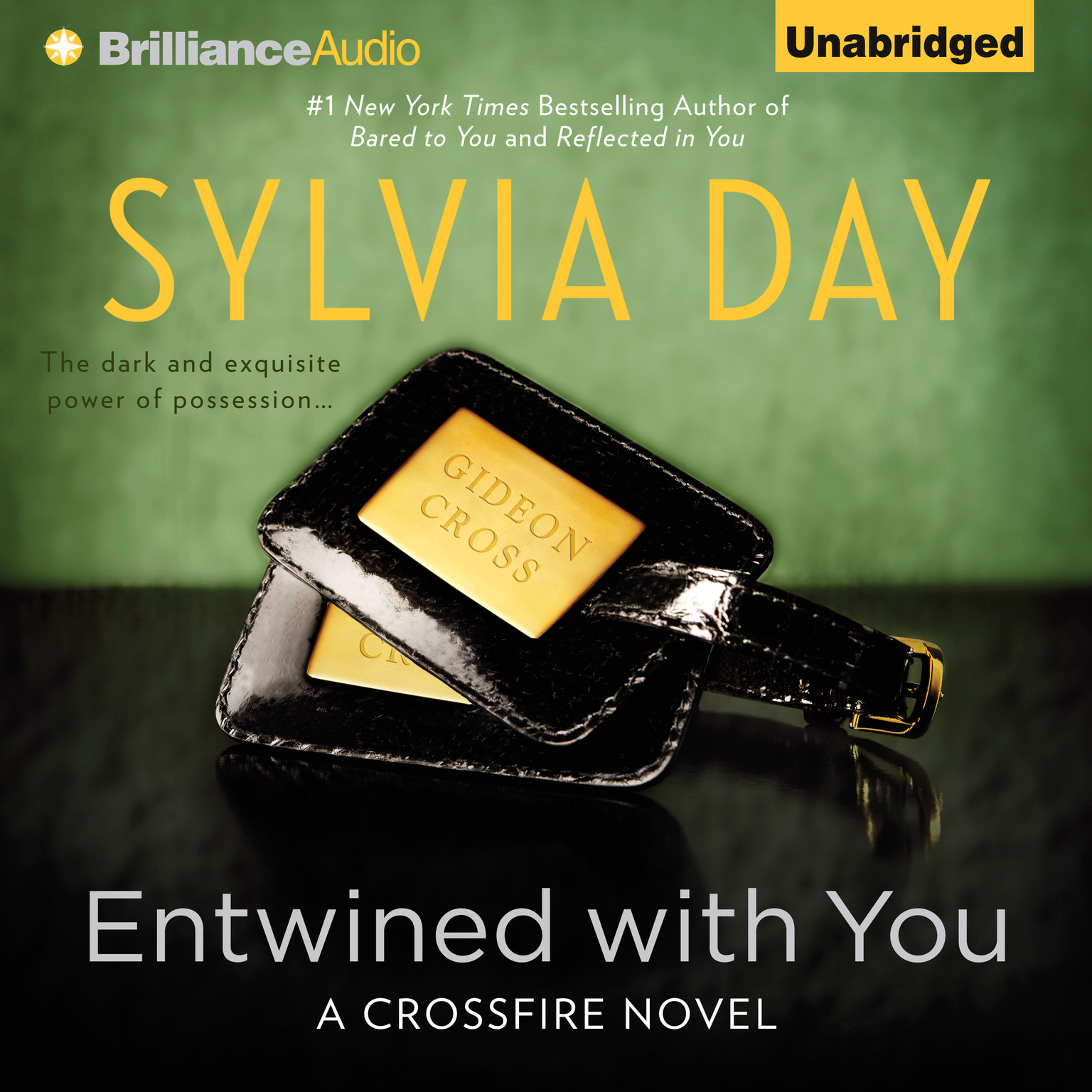 Printable Entwined With You Audiobook Cover Art