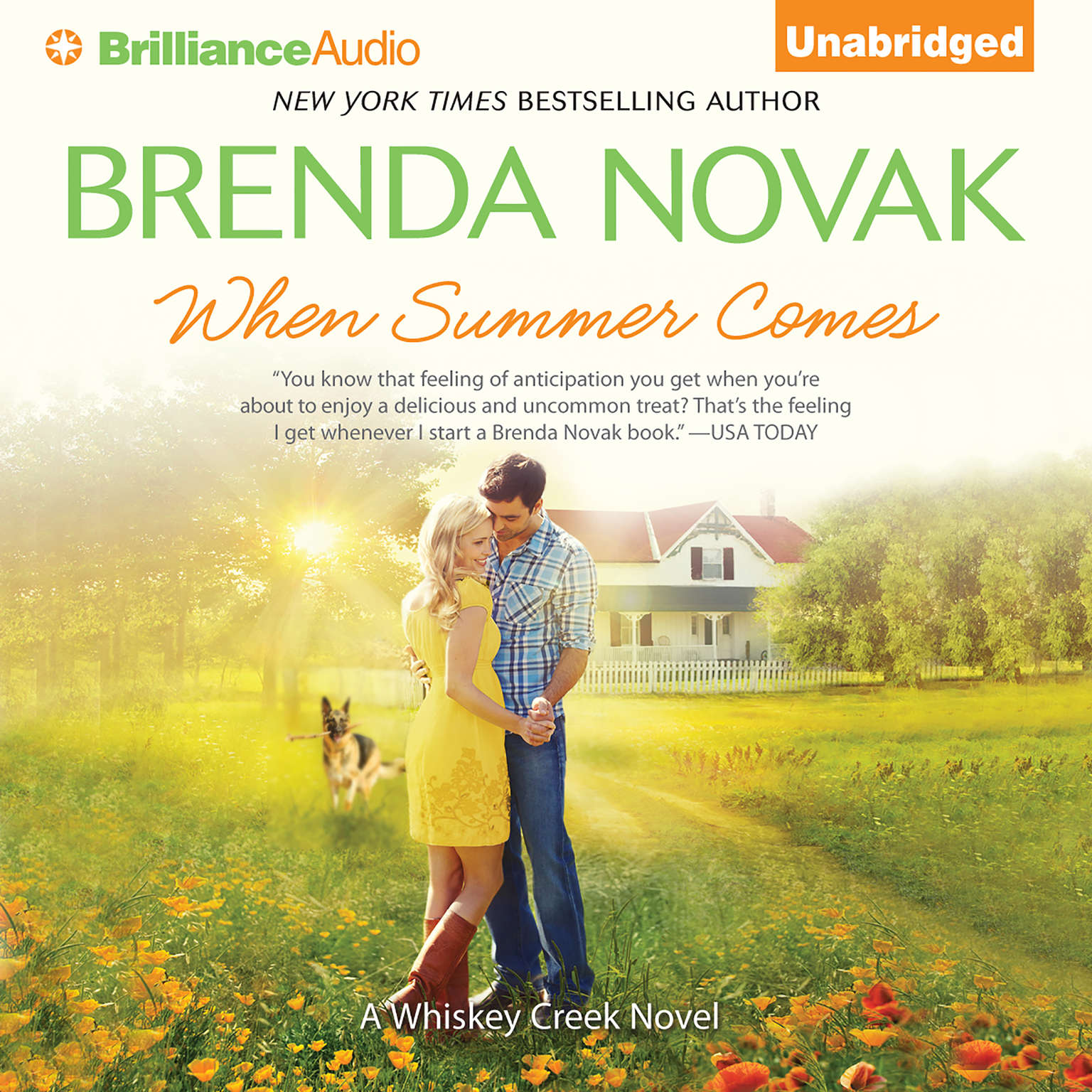 Printable When Summer Comes Audiobook Cover Art