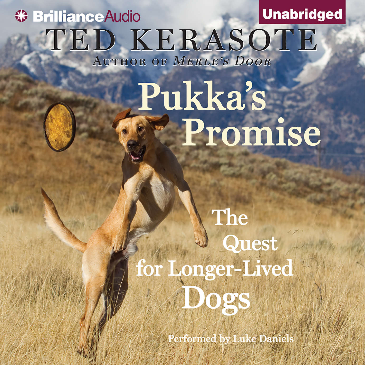 Printable Pukka's Promise: The Quest for Longer-Lived Dogs Audiobook Cover Art