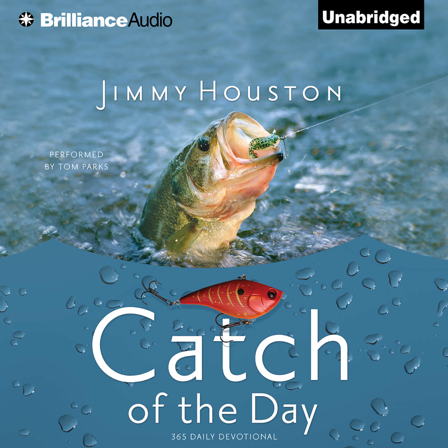 Printable Catch of the Day Audiobook Cover Art