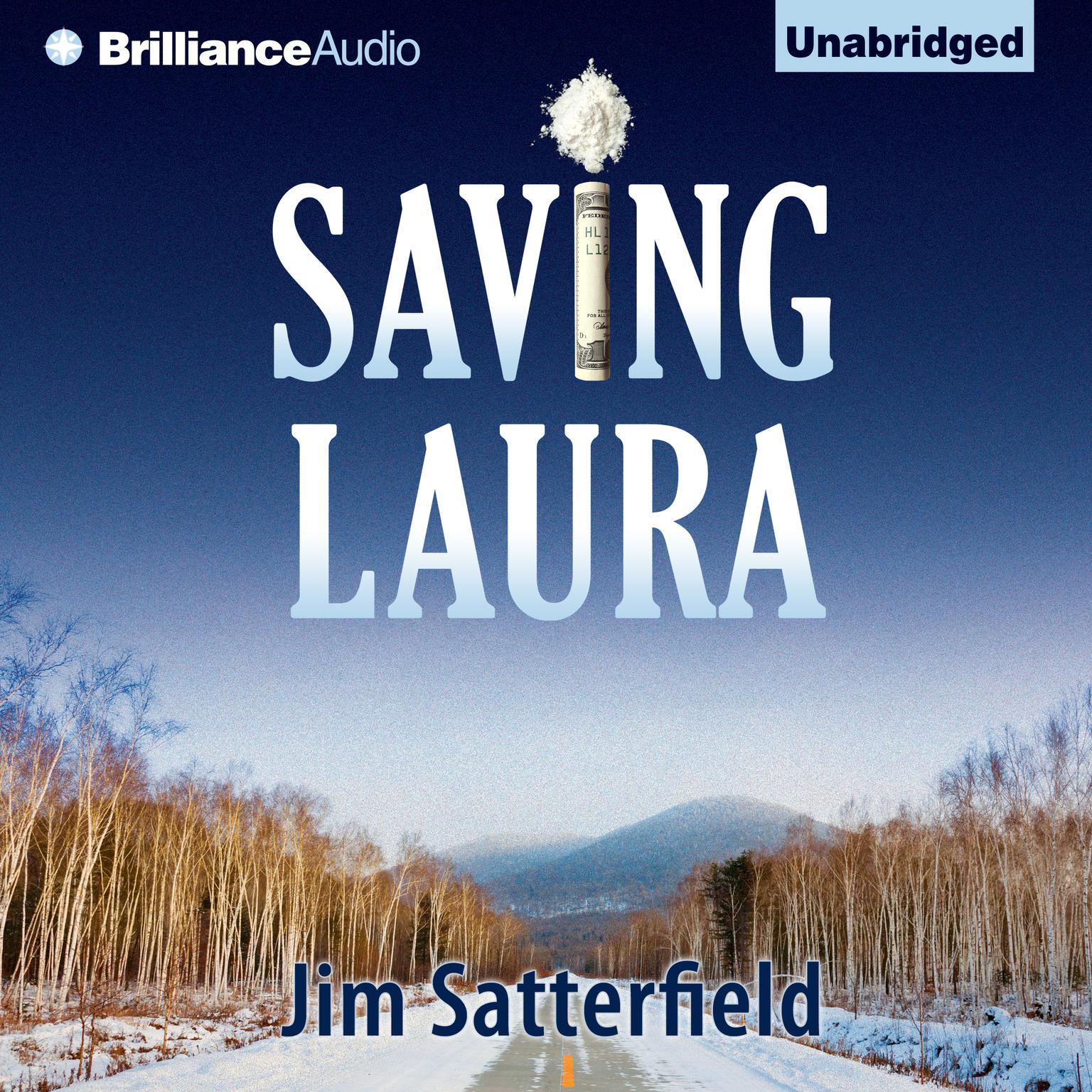 Printable Saving Laura: A Novel Audiobook Cover Art