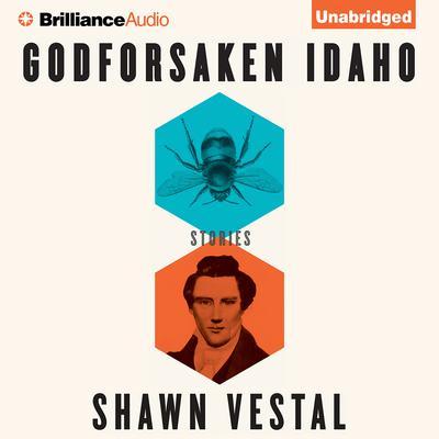 Godforsaken Idaho: Stories Audiobook, by Shawn Vestal