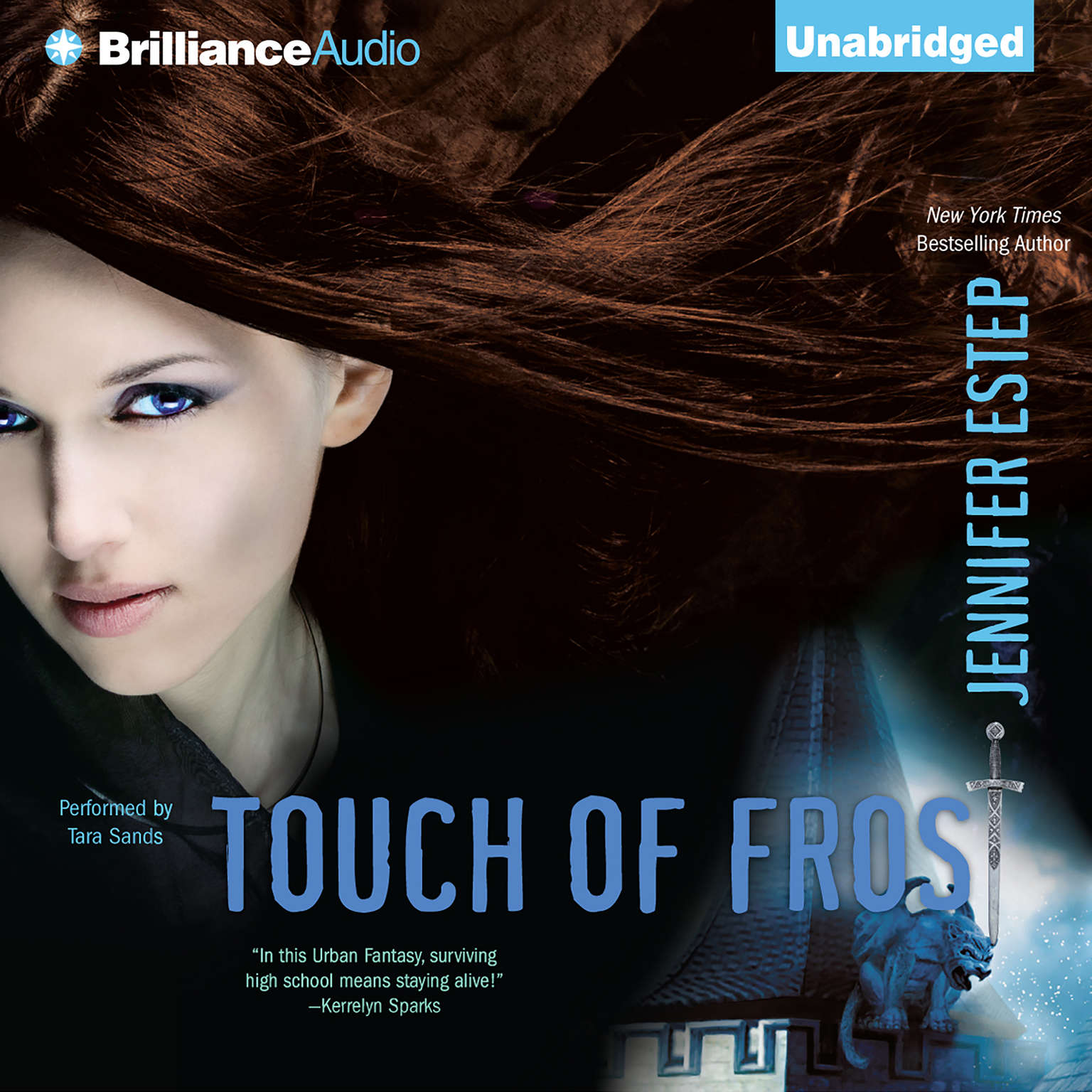Printable Touch of Frost Audiobook Cover Art