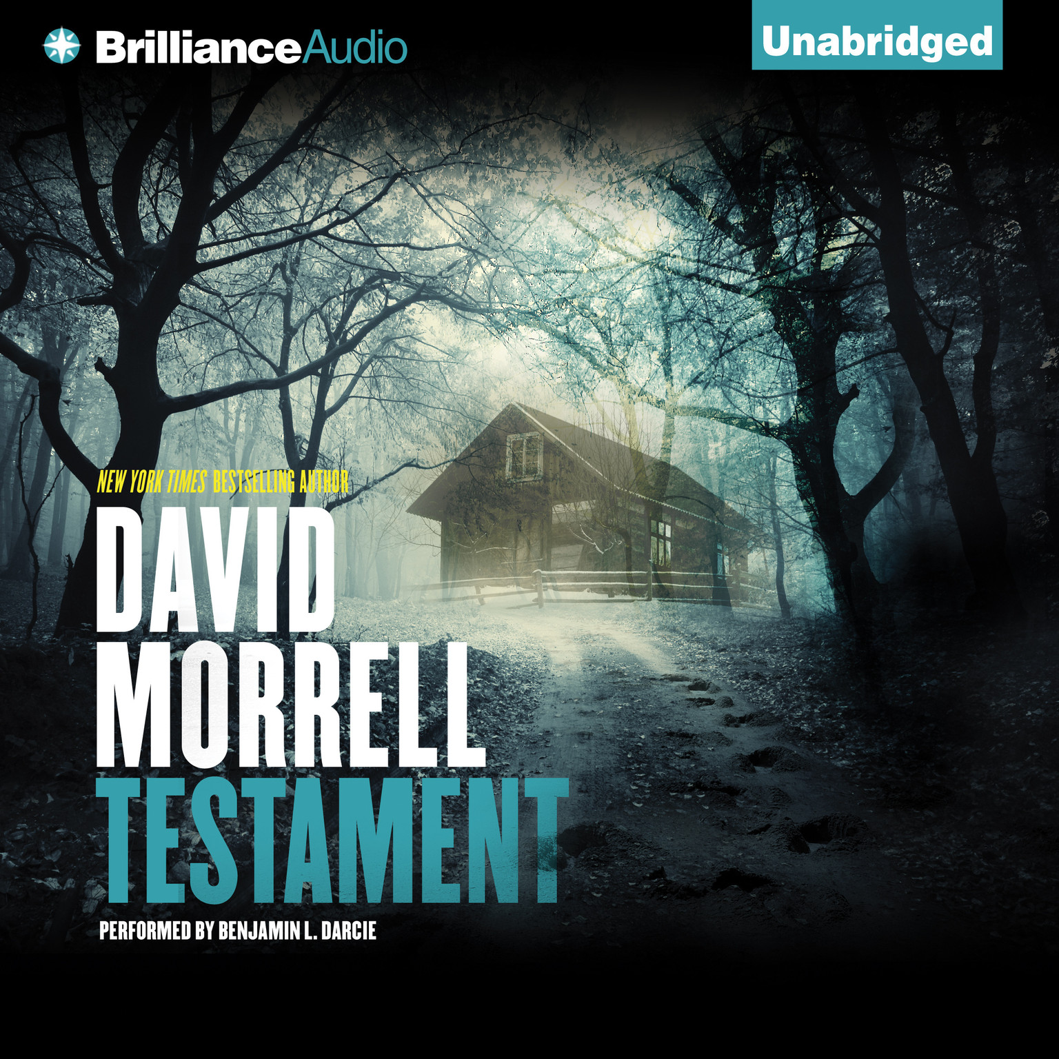Printable Testament Audiobook Cover Art
