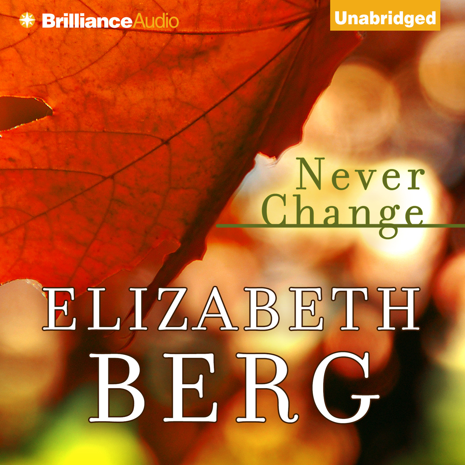 Printable Never Change Audiobook Cover Art