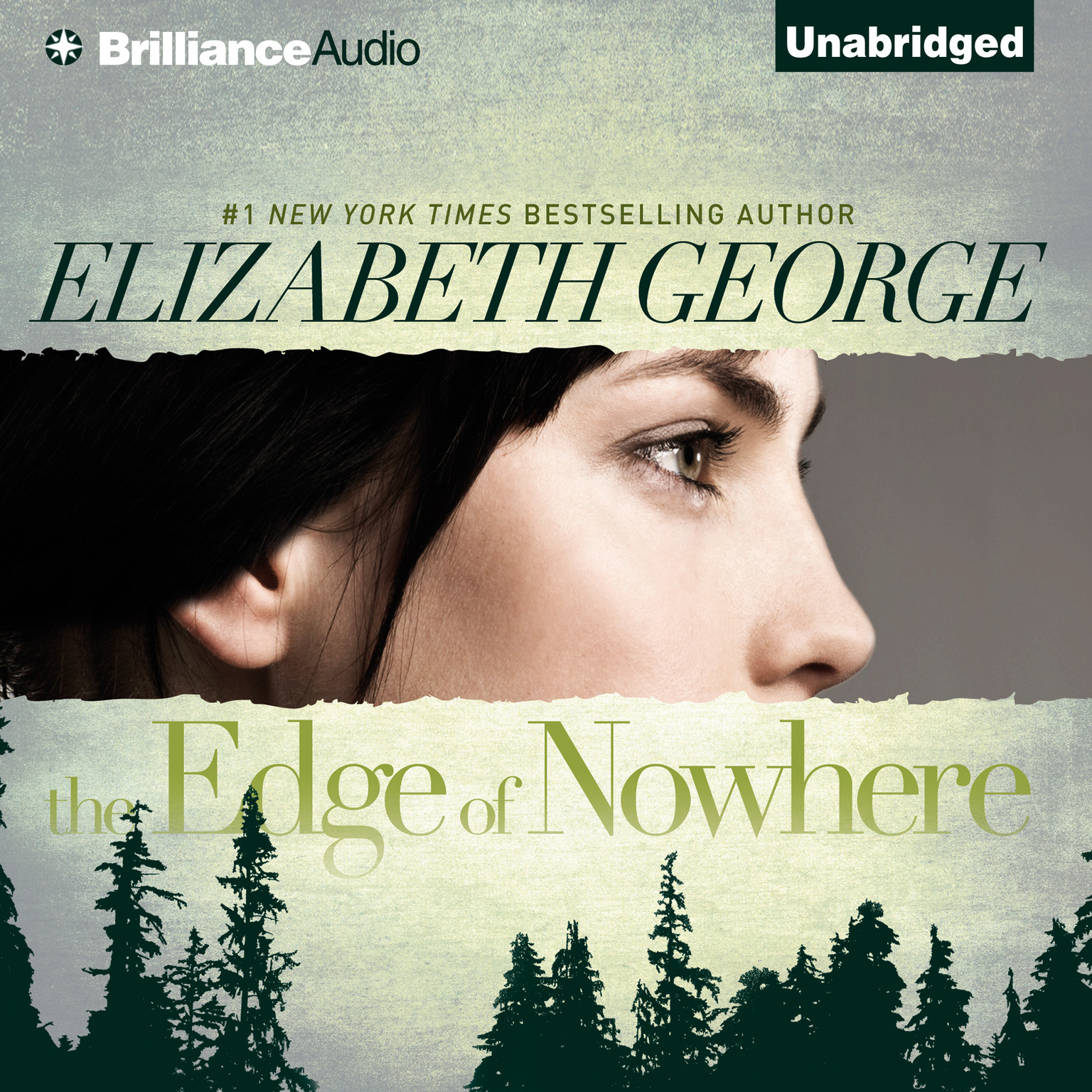 Printable The Edge of Nowhere Audiobook Cover Art