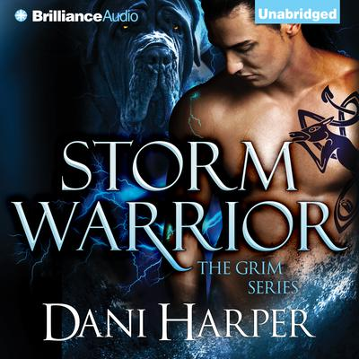 Storm Warrior Audiobook, by Dani Harper