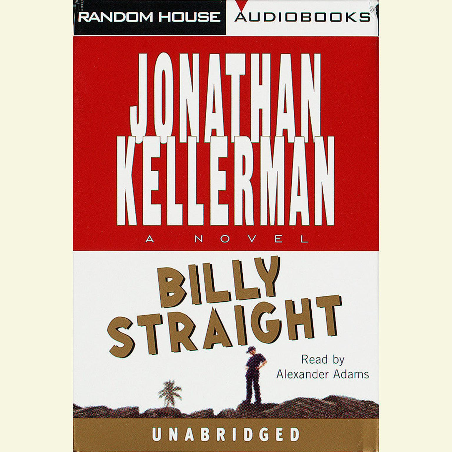 Printable Billy Straight: A Novel Audiobook Cover Art