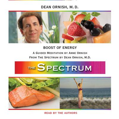 Boost of Energy: A Guided Meditation from THE SPECTRUM Audiobook, by Dean Ornish