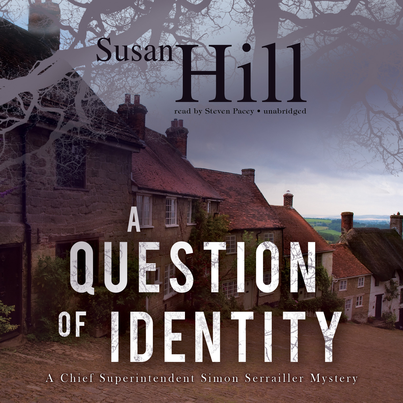Printable A Question of Identity: A Chief Superintendent Simon Serrailler Mystery Audiobook Cover Art