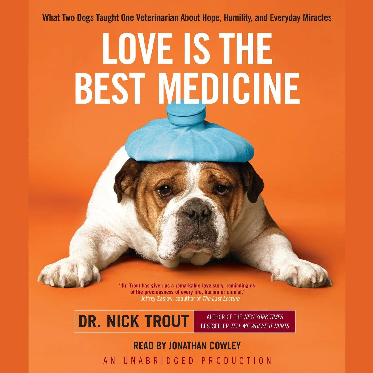 Printable Love Is the Best Medicine: What Two Dogs Taught One Veterinarian About Hope, Humility, and Everyday Miracles Audiobook Cover Art
