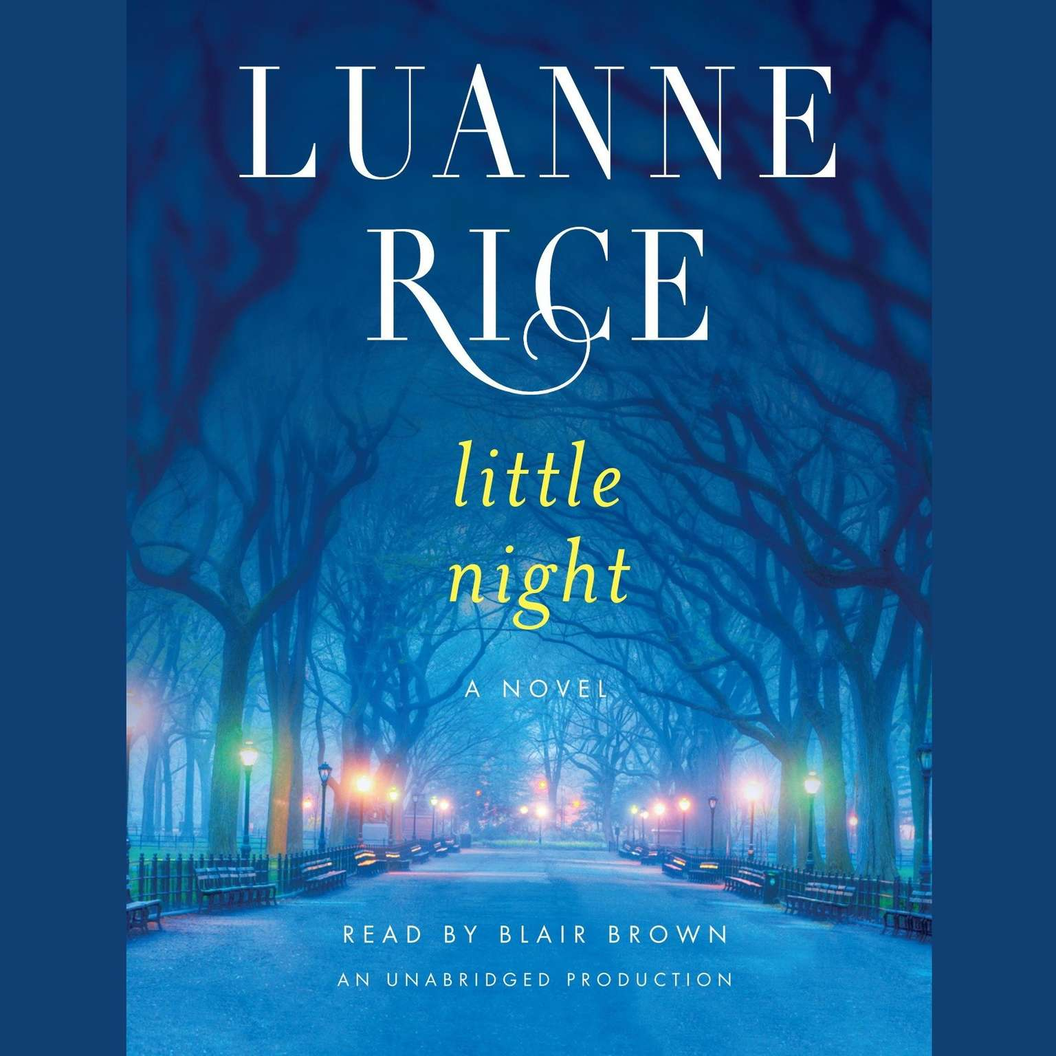 Printable Little Night: A Novel Audiobook Cover Art