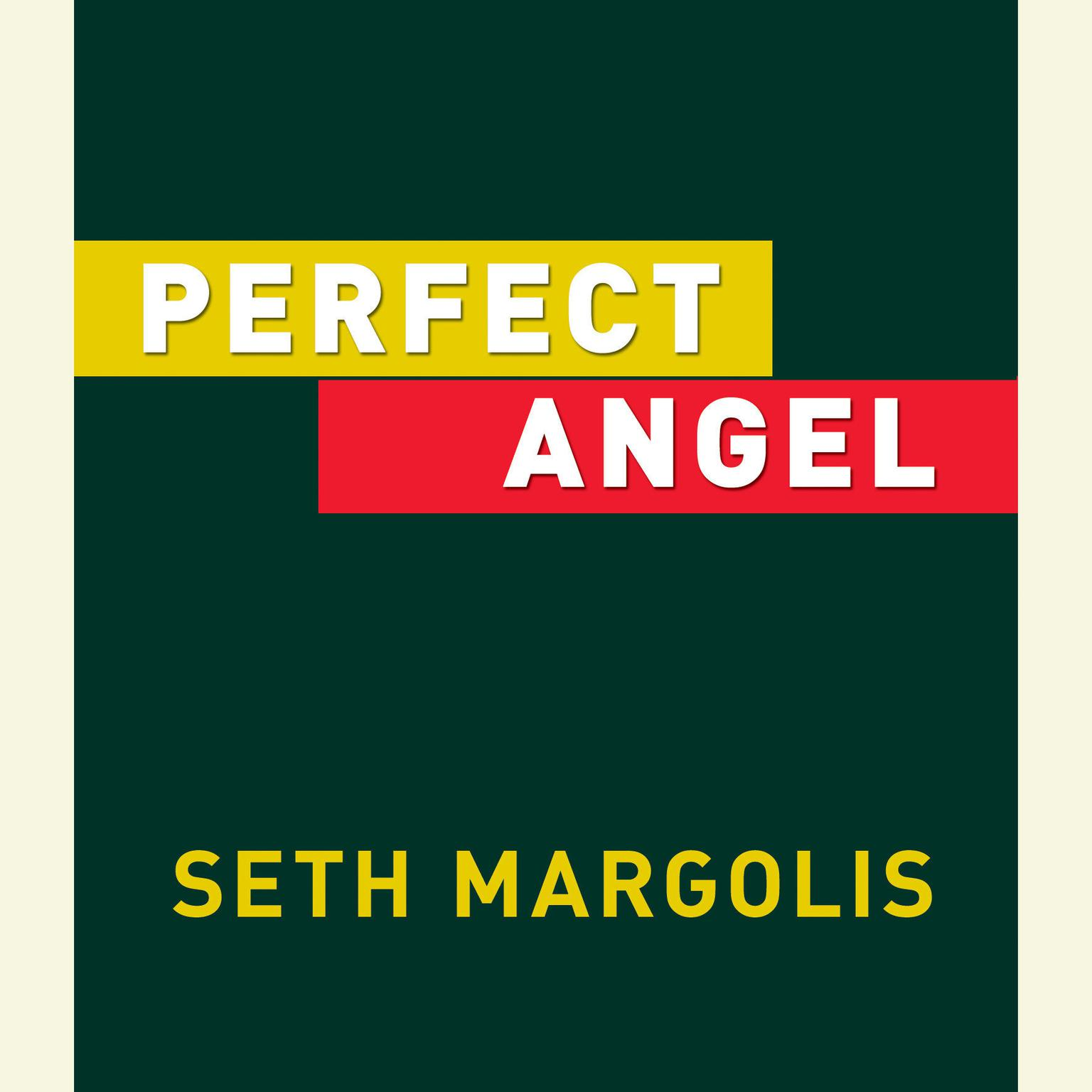Printable Perfect Angel Audiobook Cover Art