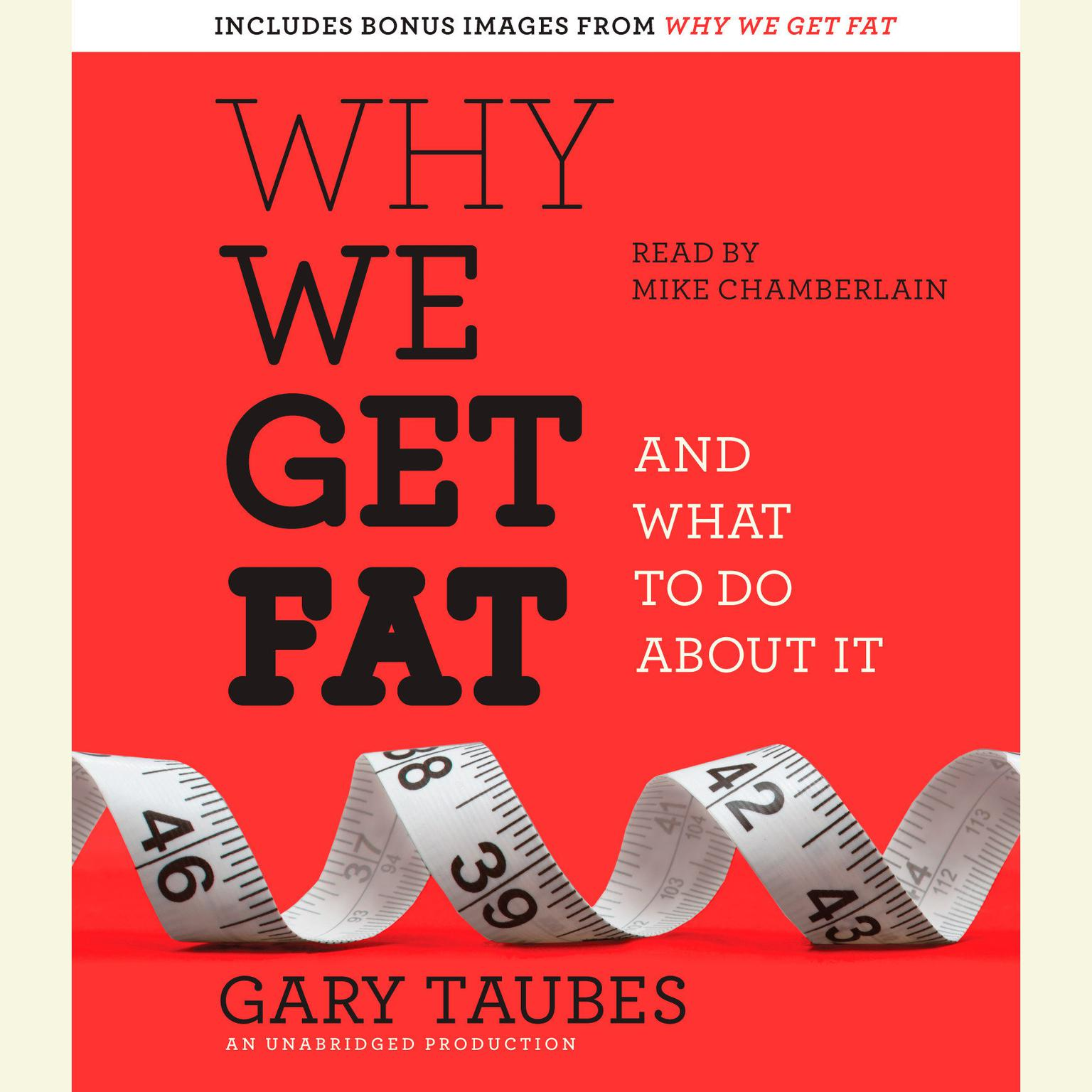 Printable Why We Get Fat: And What to Do About It Audiobook Cover Art