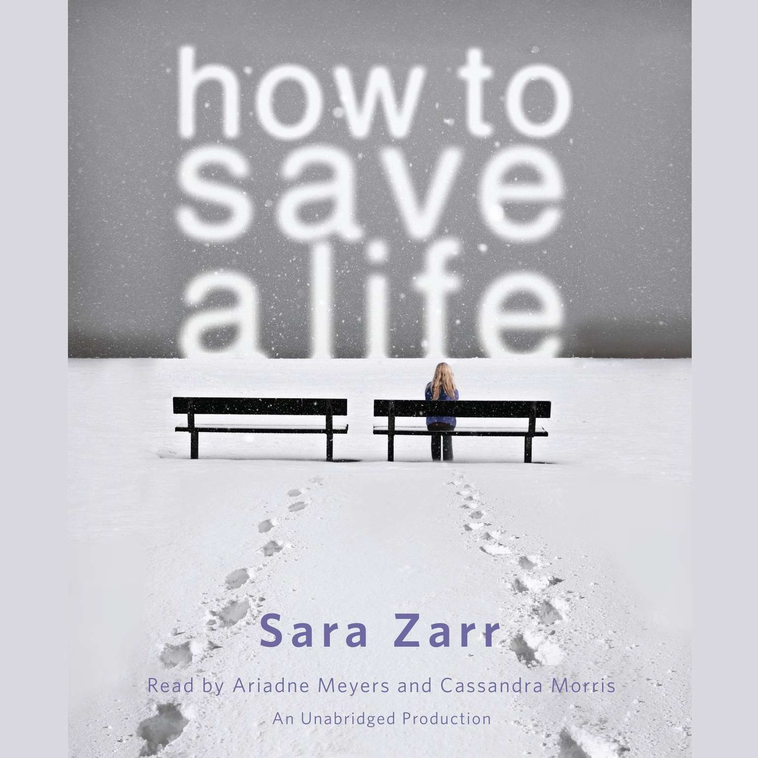 Printable How to Save a Life Audiobook Cover Art