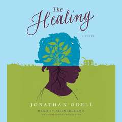 The Healing Audiobook, by Jonathan Odell