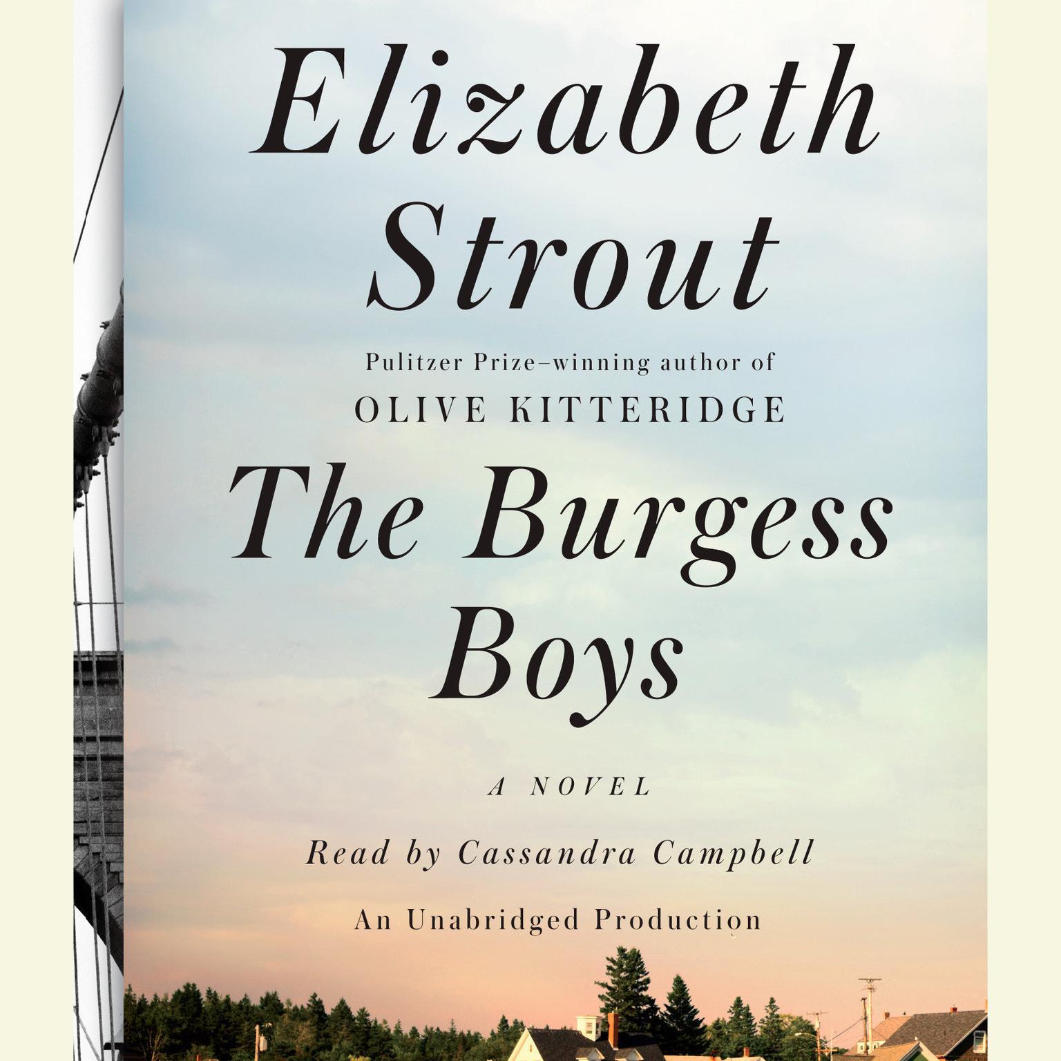 Printable The Burgess Boys: A Novel Audiobook Cover Art