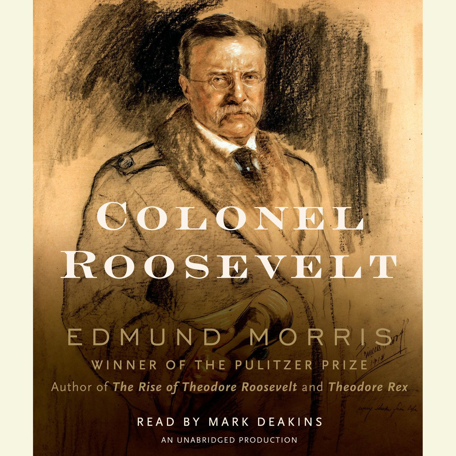 Printable Colonel Roosevelt Audiobook Cover Art