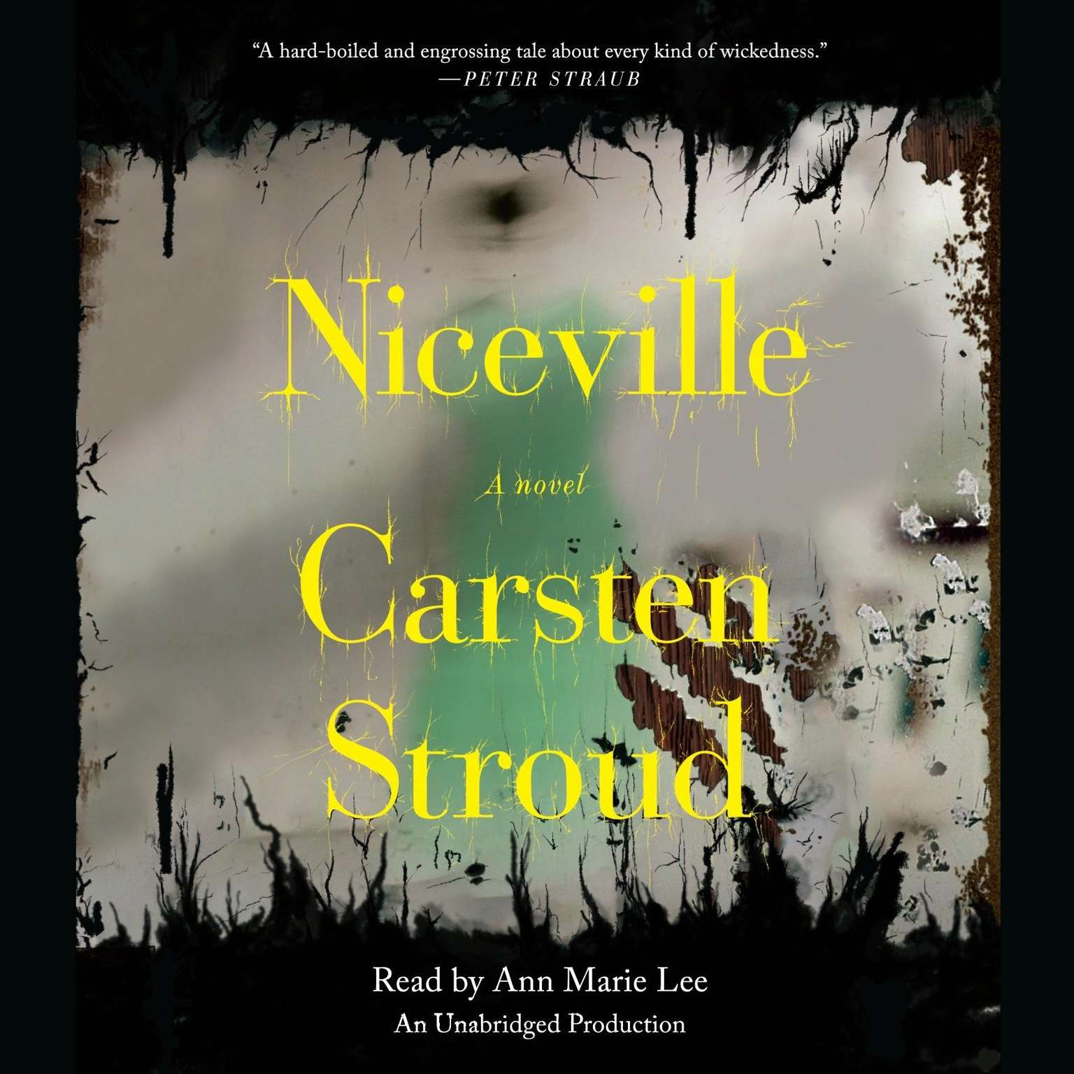 Printable Niceville Audiobook Cover Art