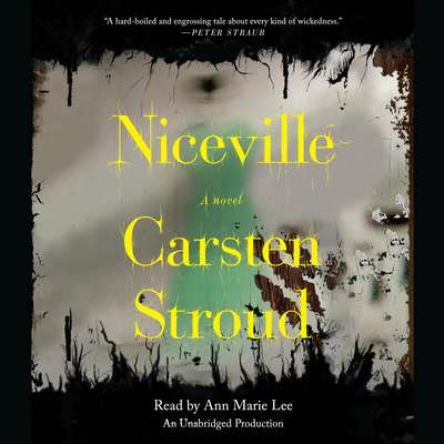 Niceville Audiobook, by Carsten Stroud