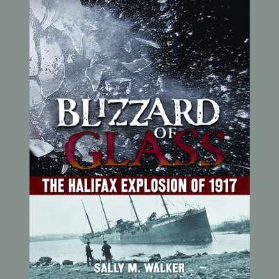 Blizzard of Glass: The Halifax Explosion of 1917 Audiobook, by Sally M. Walker