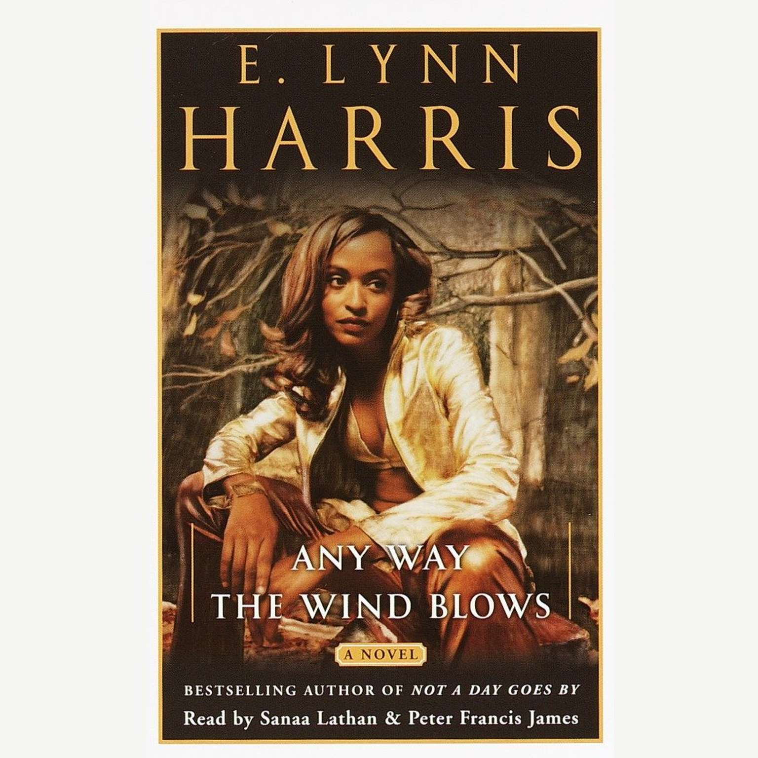 Printable Any Way the Wind Blows: A Novel Audiobook Cover Art