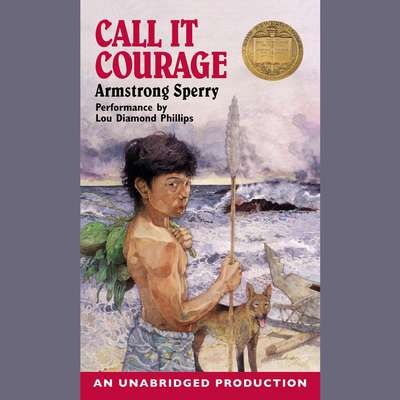 Call it Courage Audiobook, by Armstrong Sperry