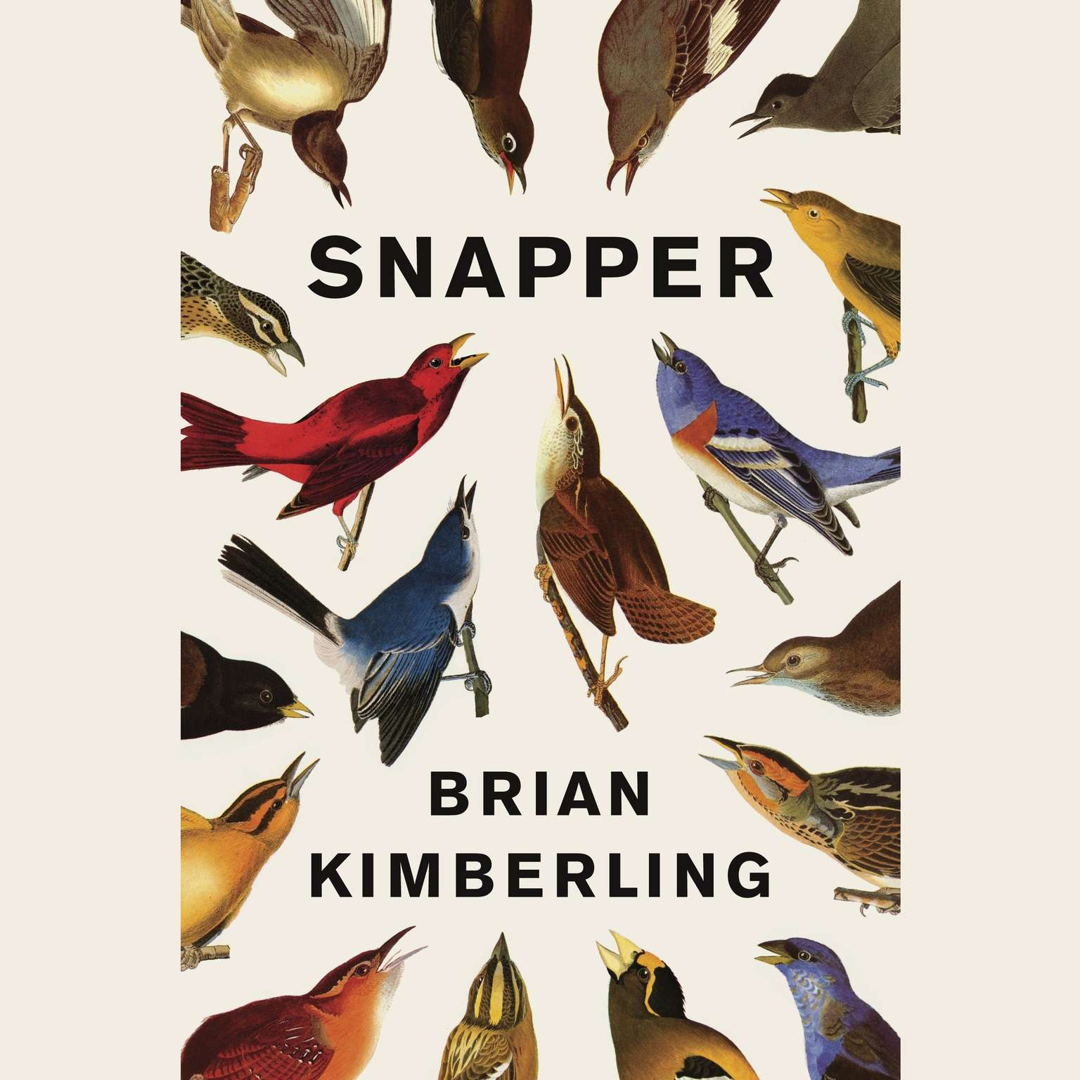 Printable Snapper Audiobook Cover Art