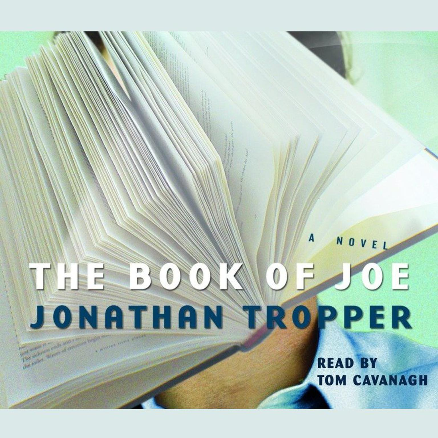 Printable The Book of Joe Audiobook Cover Art