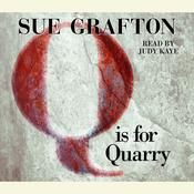 Q Is For Quarry, by Sue Grafton