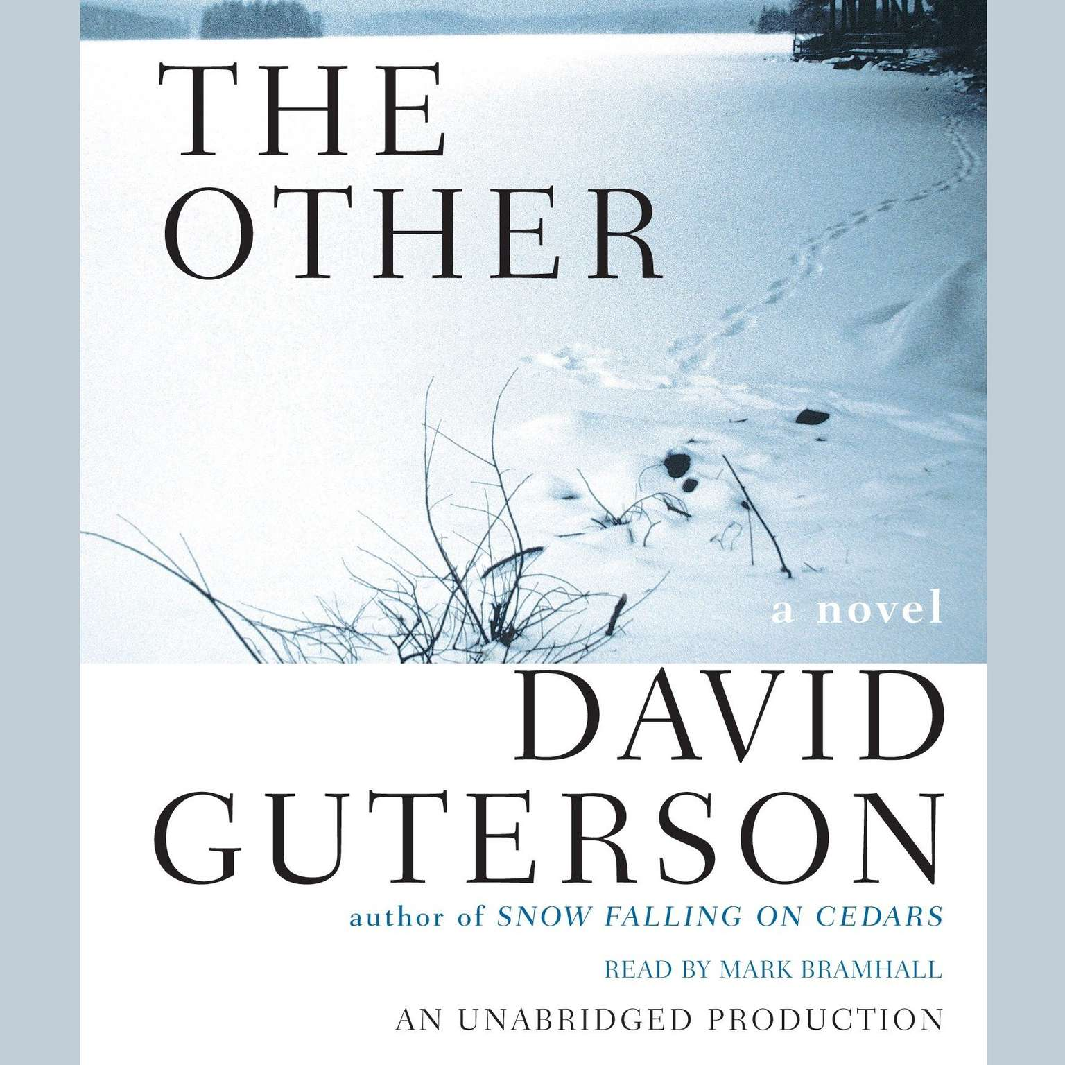Printable The Other Audiobook Cover Art