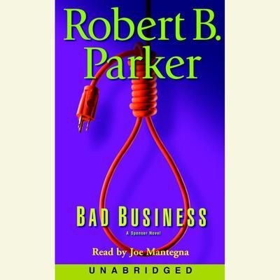 Bad Business Audiobook, by Robert B. Parker