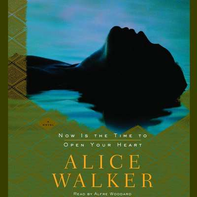 Now Is the Time to Open Your Heart: A Novel Audiobook, by Alice Walker