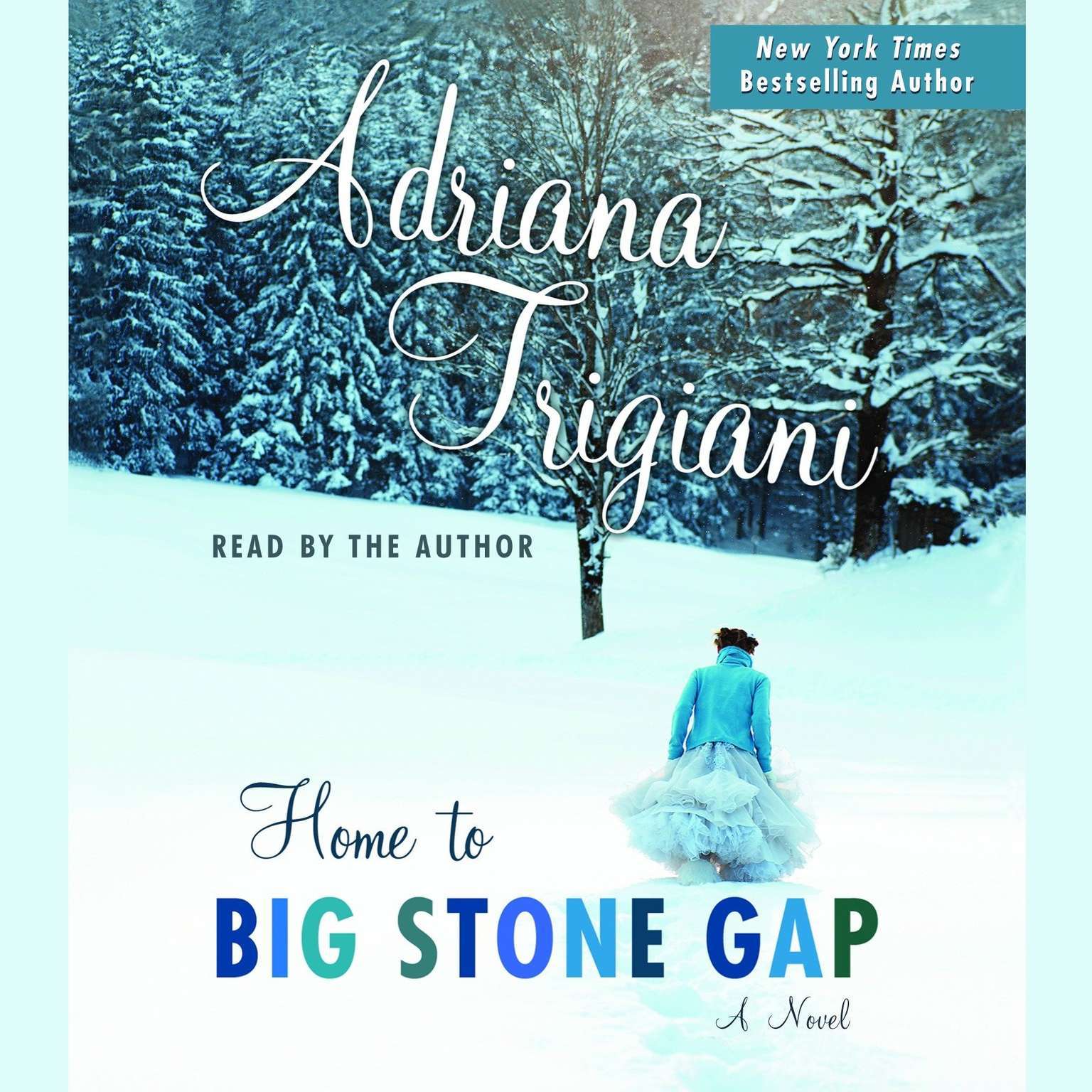Printable Home to Big Stone Gap: A Novel Audiobook Cover Art