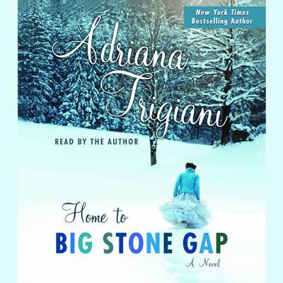 Home to Big Stone Gap: A Novel Audiobook, by Adriana Trigiani