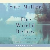 The World Below Audiobook, by Sue Miller
