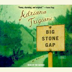 Big Stone Gap: A Novel Audiobook, by Adriana Trigiani
