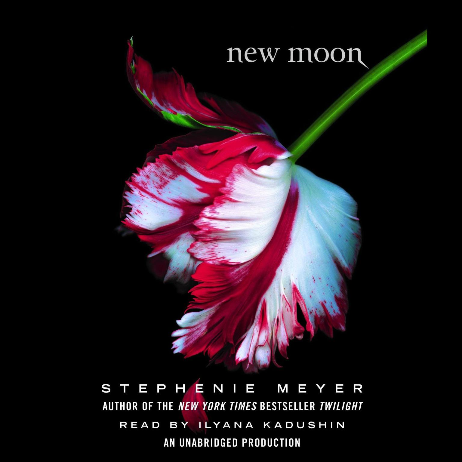 Printable New Moon Audiobook Cover Art