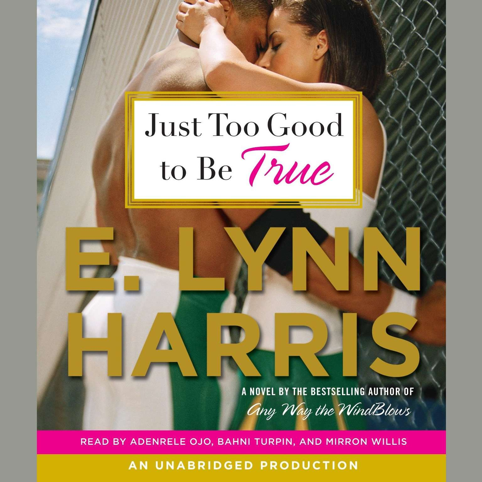 Printable Just Too Good to Be True Audiobook Cover Art