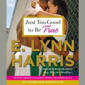 Just Too Good to Be True Audiobook, by E. Lynn Harris