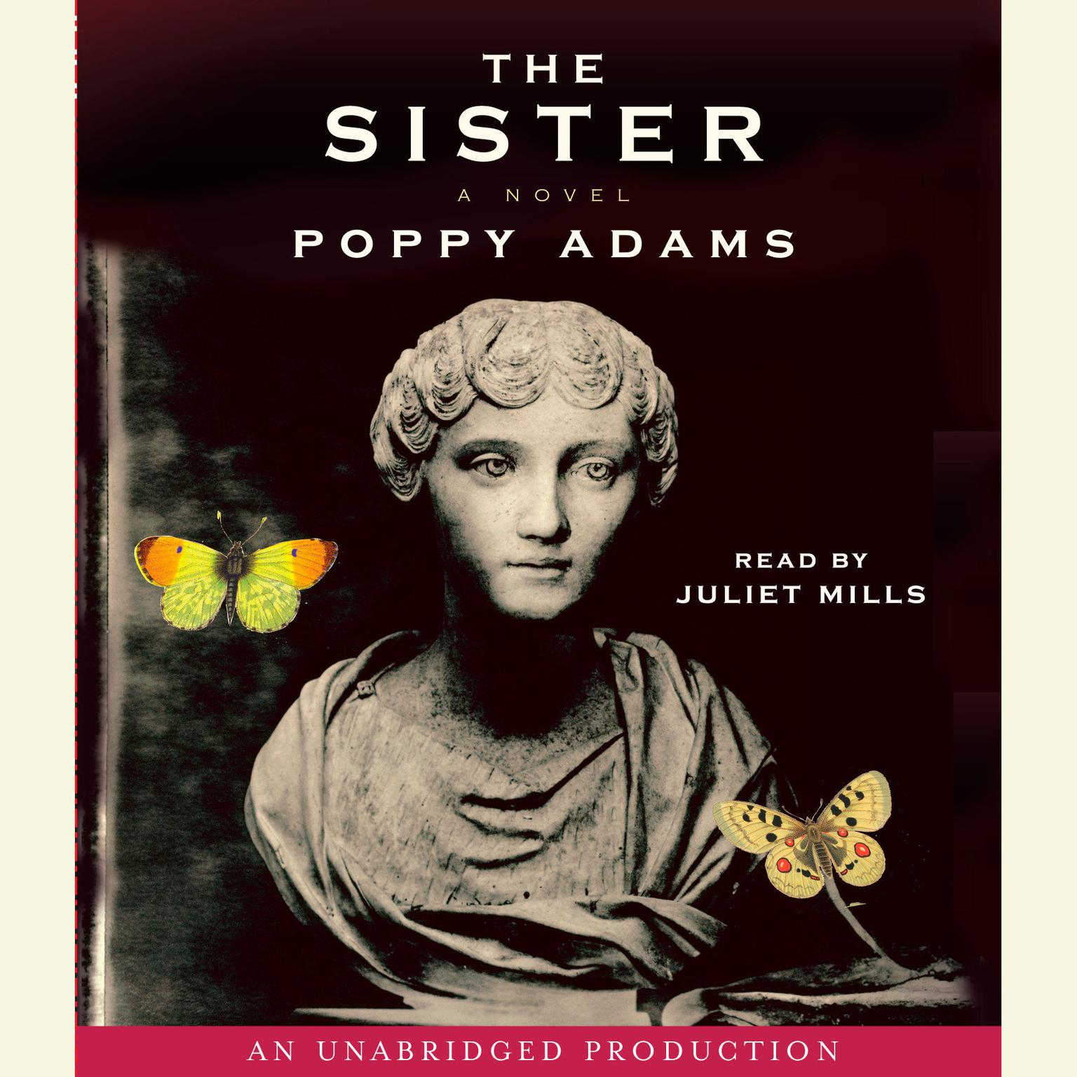 Printable The Sister Audiobook Cover Art