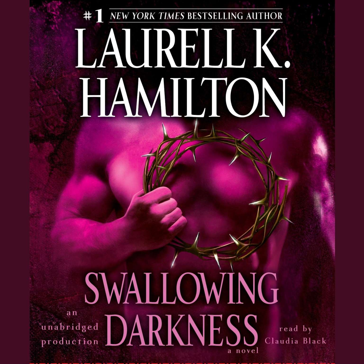 Printable Swallowing Darkness: A Novel Audiobook Cover Art
