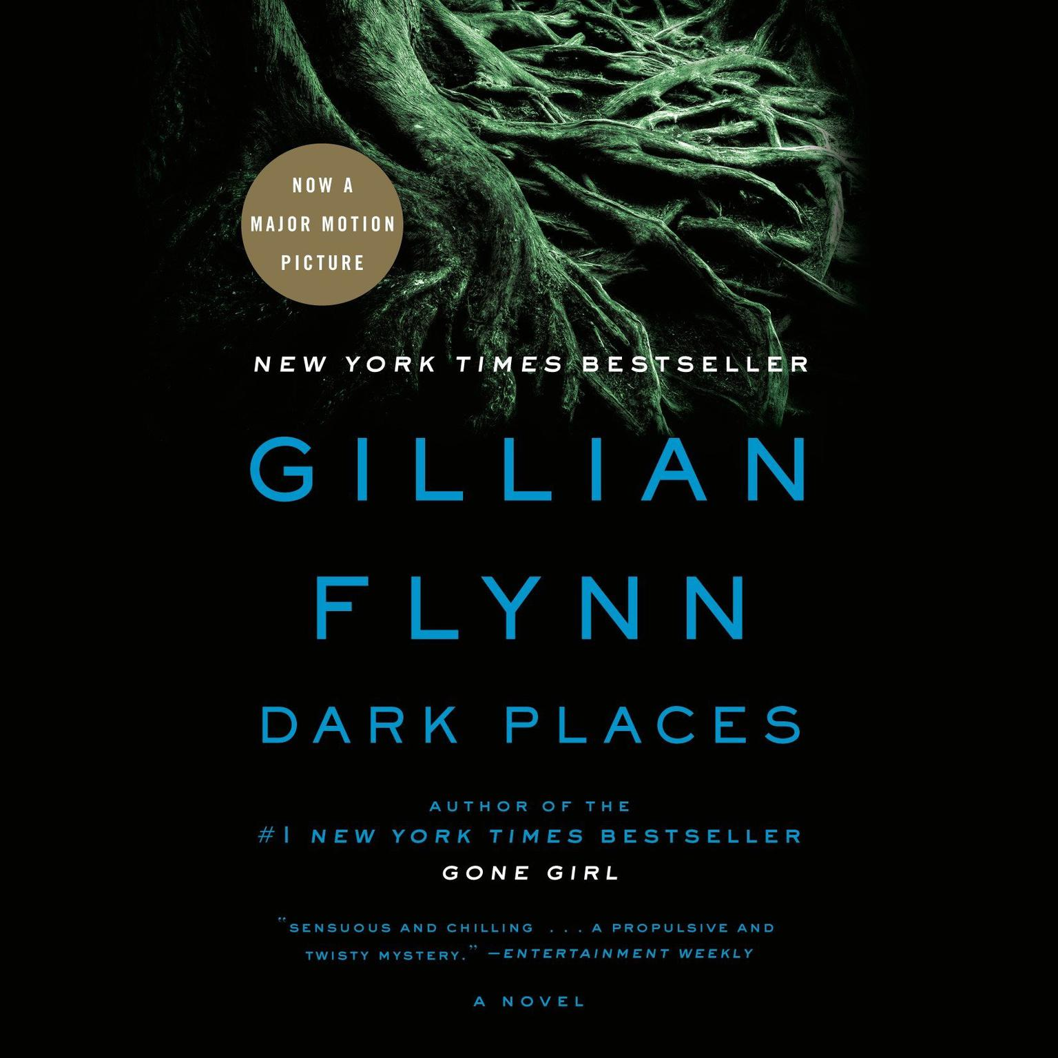 Printable Dark Places: A Novel Audiobook Cover Art