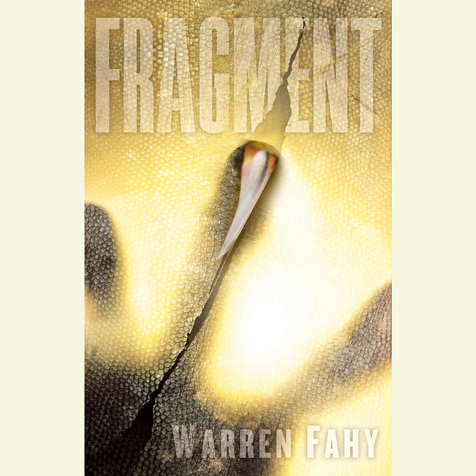 Printable Fragment: A Novel Audiobook Cover Art
