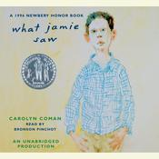 What Jamie Saw Audiobook, by Carolyn Coman
