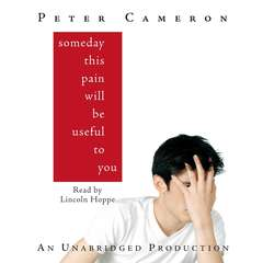 Someday This Pain Will Be Useful to You Audiobook, by Peter Cameron