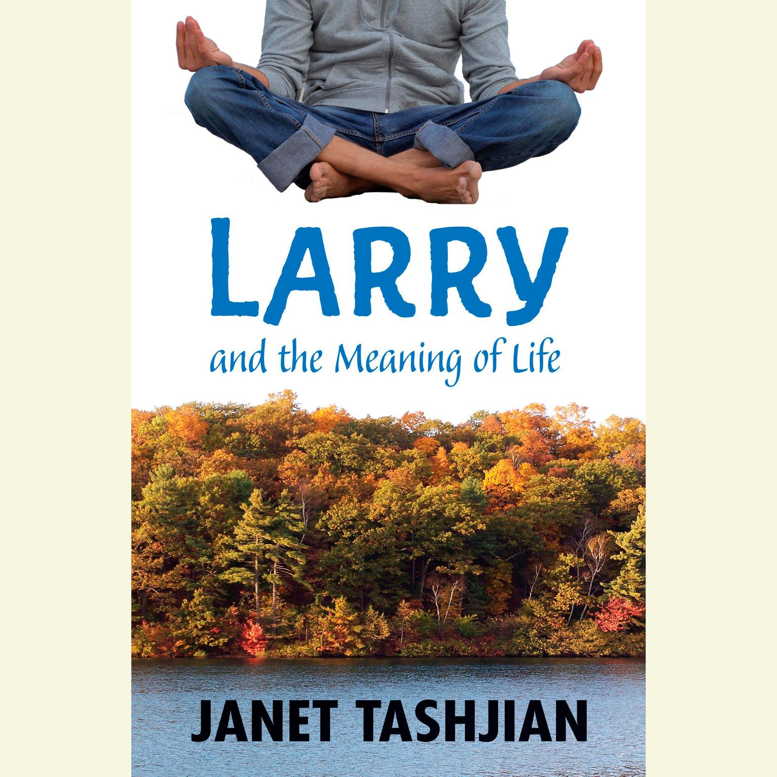 Printable Larry and the Meaning of Life Audiobook Cover Art