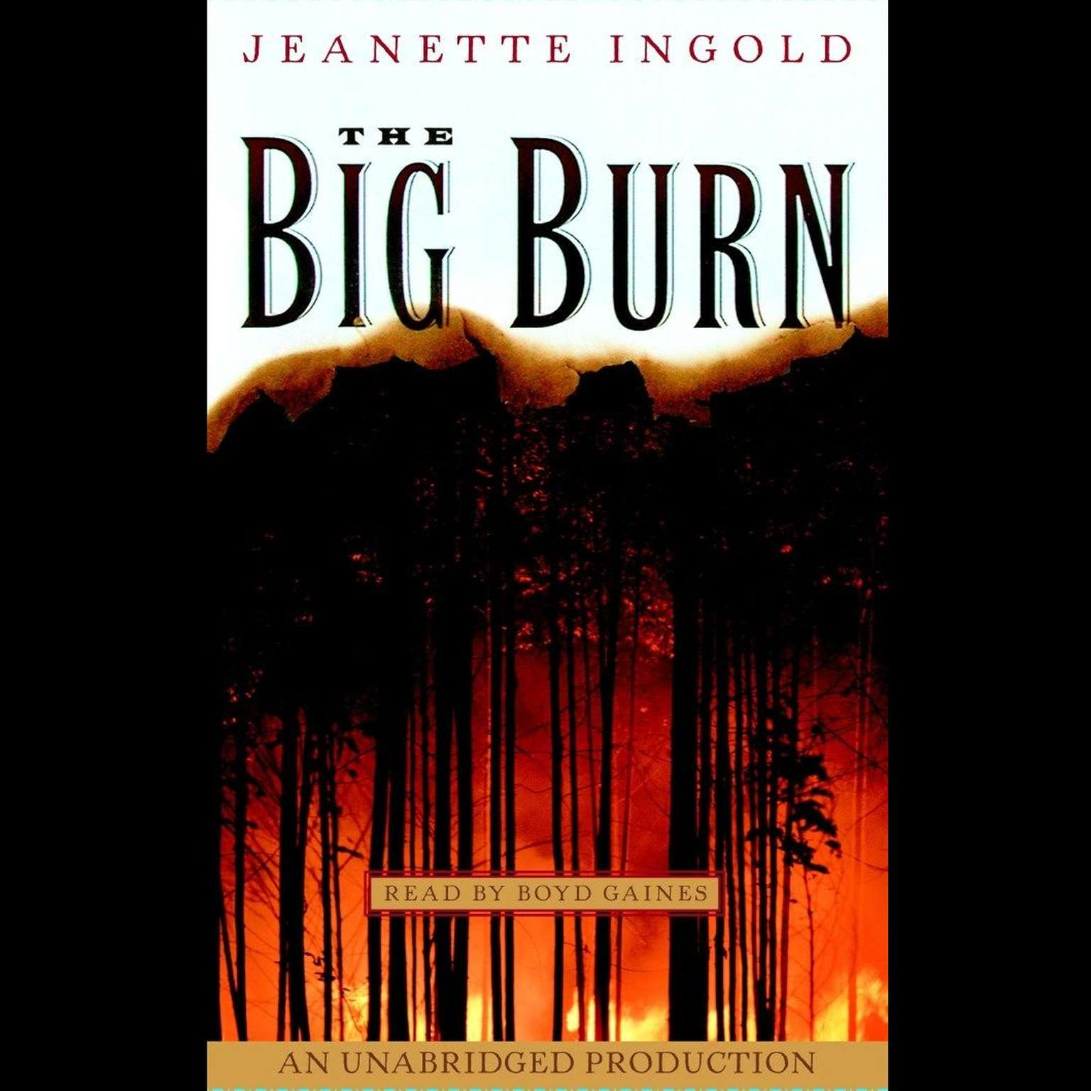 Printable The Big Burn Audiobook Cover Art