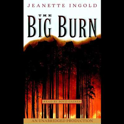 The Big Burn Audiobook, by Jeanette Ingold