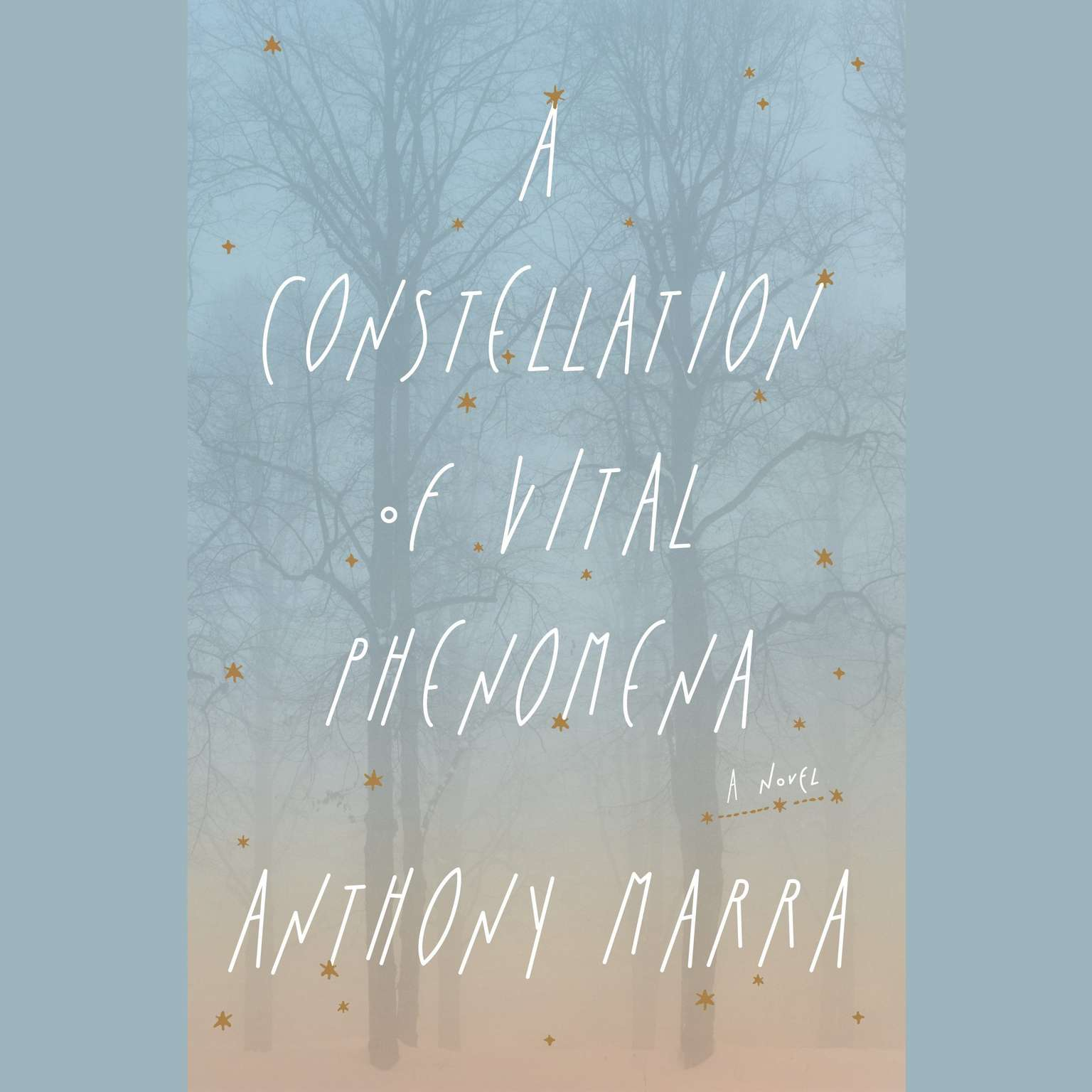 Printable A Constellation of Vital Phenomena: A Novel Audiobook Cover Art